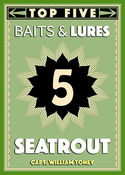 Top 5 Seatrout Baits & Lures